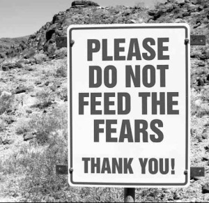 feedthefears